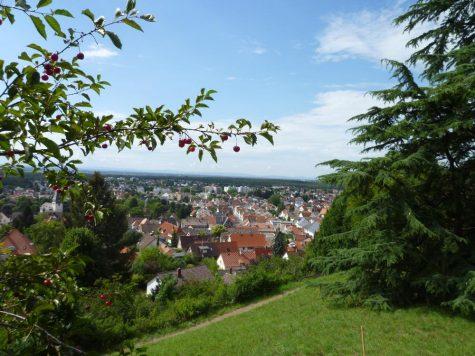 Neuwertiges 1-2-Fam.-Haus in einem höhergelegenen Ortsteil von Seeheim-Jugenheim, 64342 Seeheim-Jugenheim, Einfamilienhaus